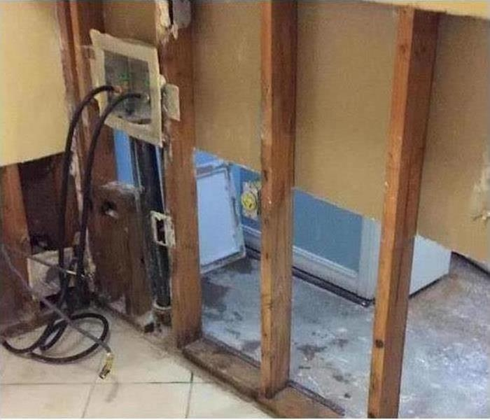 Mold Damage – Naples Laundry Room After