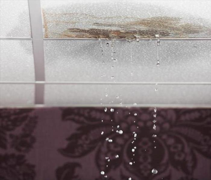 Water Damaged Ceiling Repair in Your Naples Home