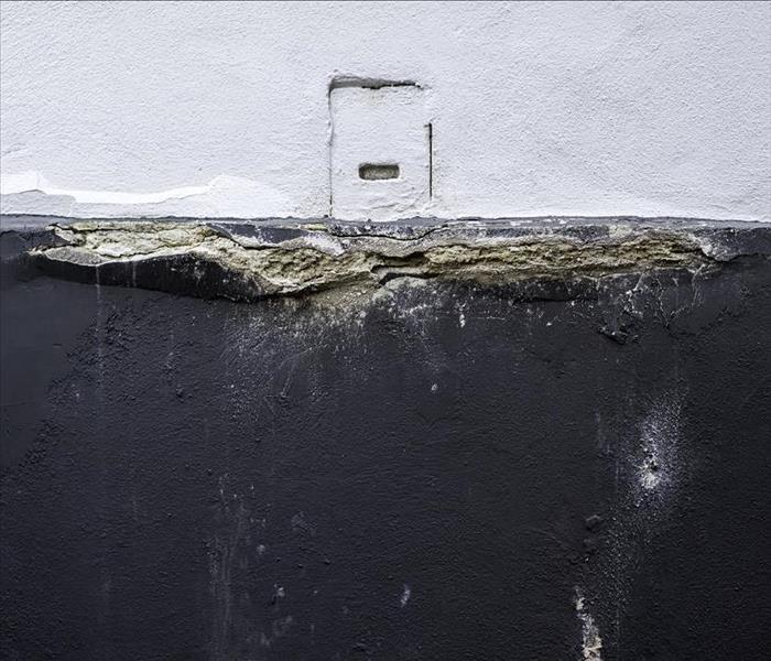 Water Damage Look Out for These 4 Signs of Water Damage in Naples Homes