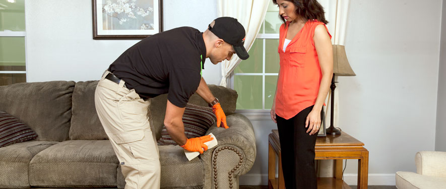 Naples, FL carpet upholstery cleaning