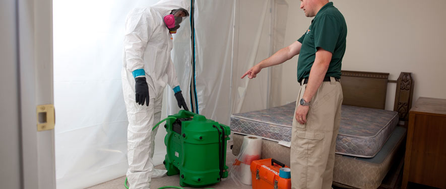 Naples, FL mold removal process